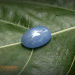Batu Pengasihan Wijayakusuma